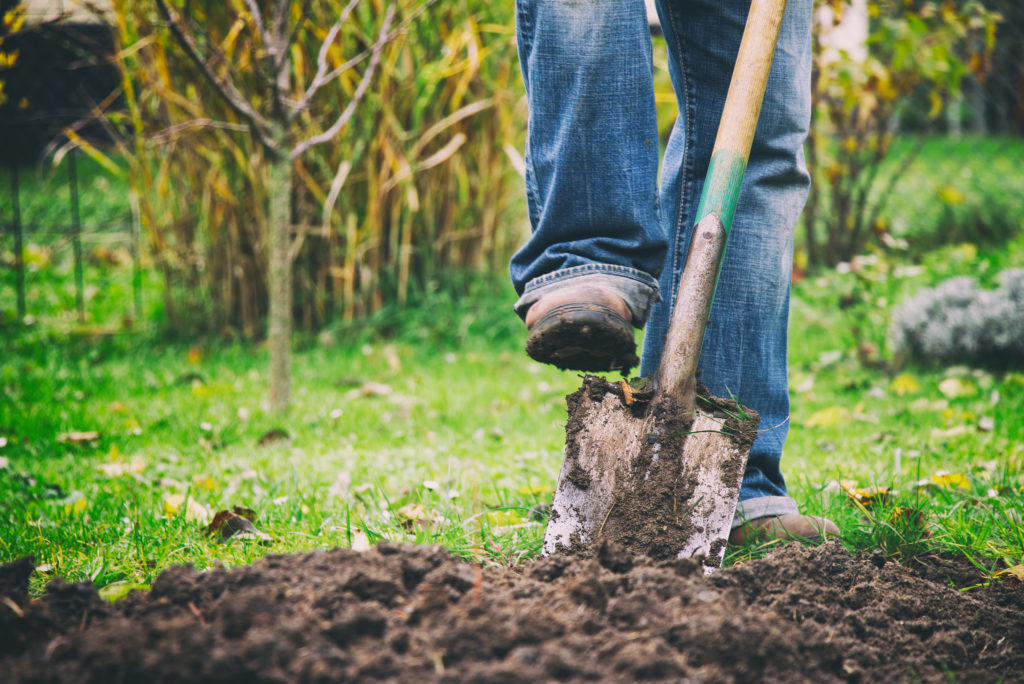 Digging In Yard | General Labor Services, Atlanta, GA | Hands You Demand